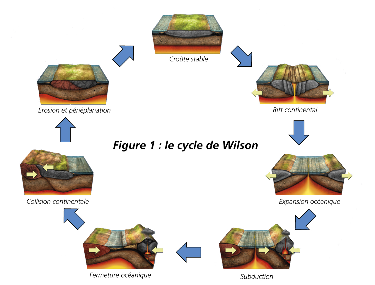 Figure 1: Wilson cycle Stable crust / Continental rift / Oceanic expansion / Subduction / Oceanic closure / Continental collision / Erosion and peneplanation
